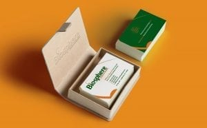 Photograph of business card designs