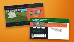 image of professionay design postcard design